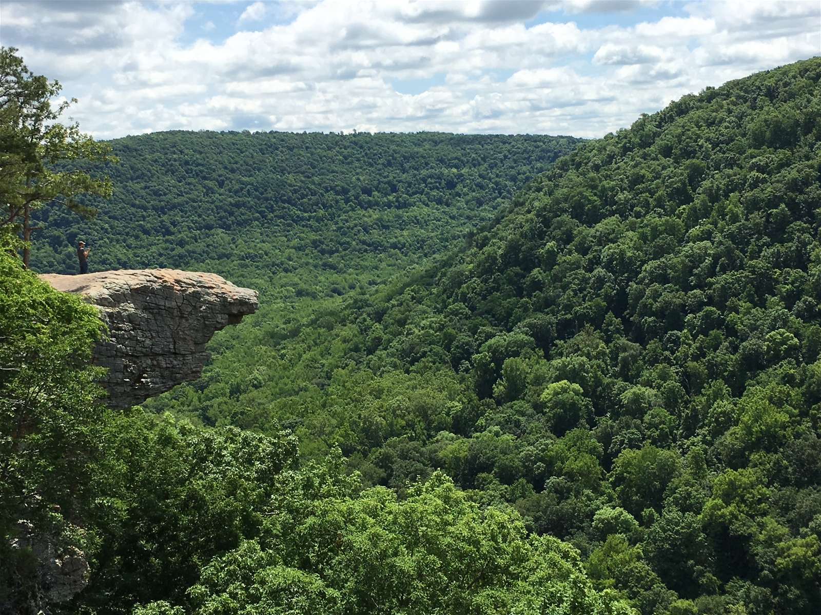 Hawksbill Crag!